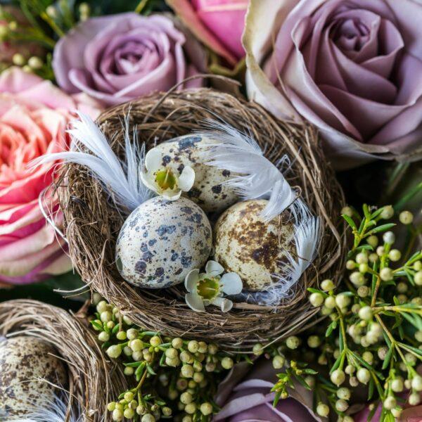 flower bird nest